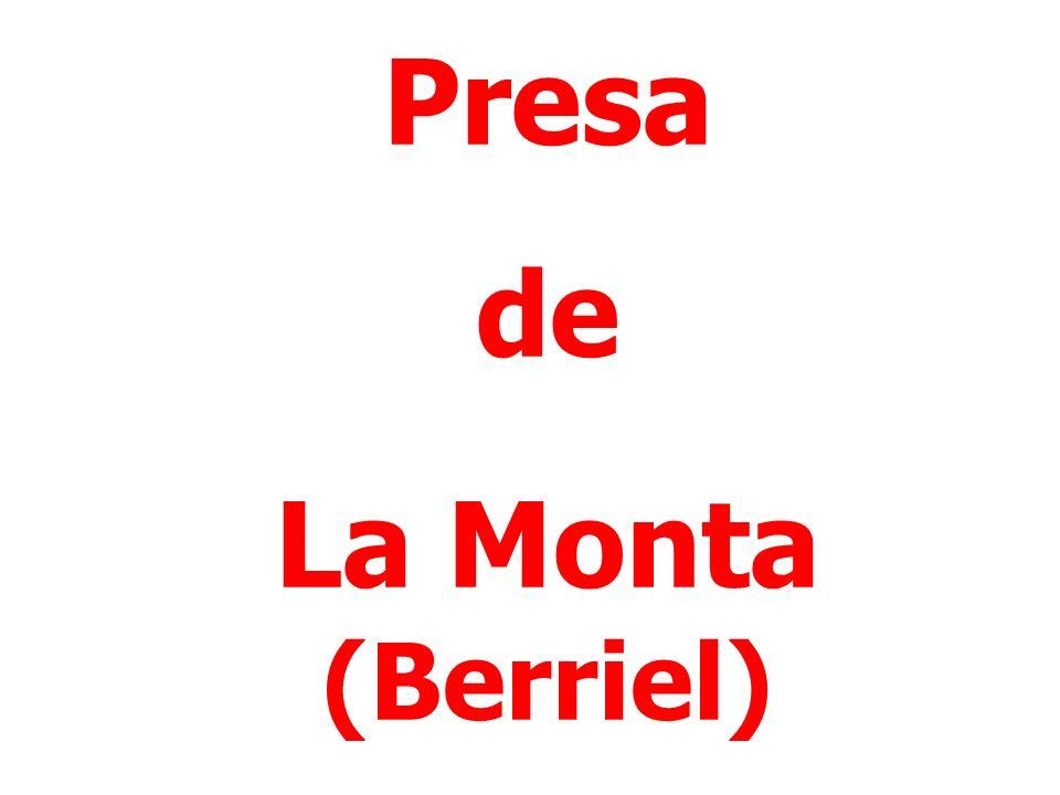 Presa de La Monta (Berriel)