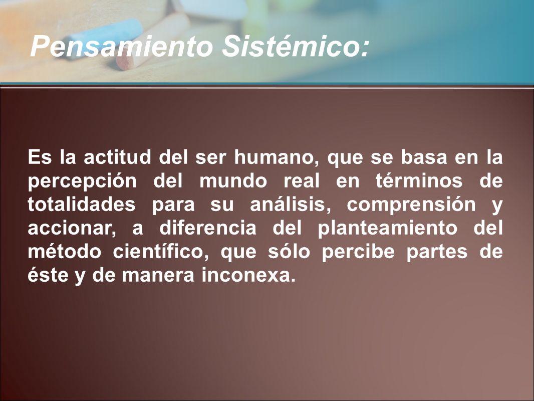 Pensamiento Sistémico: