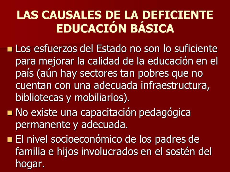 LAS CAUSALES DE LA DEFICIENTE EDUCACIÓN BÁSICA