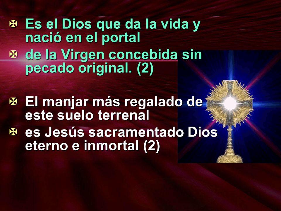 Es el Dios que da la vida y nació en el portal