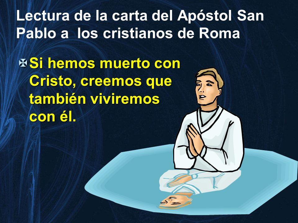 Lectura de la carta del Apóstol San Pablo a los cristianos de Roma
