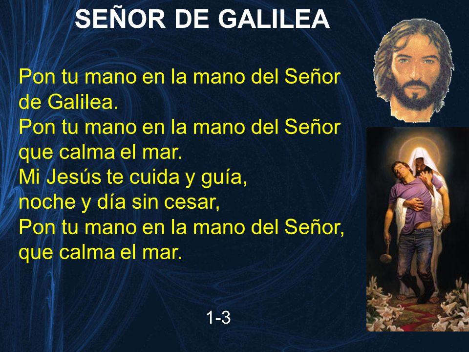 SEÑOR DE GALILEA Pon tu mano en la mano del Señor de Galilea.