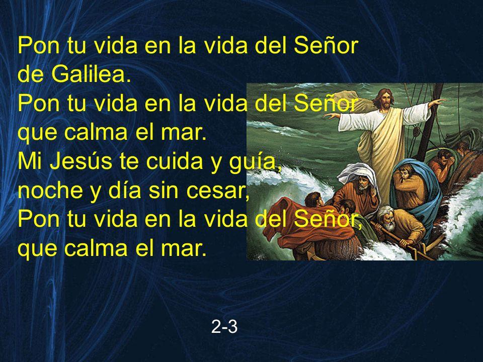 Pon tu vida en la vida del Señor de Galilea. que calma el mar.