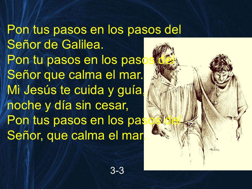 Pon tus pasos en los pasos del Señor de Galilea.