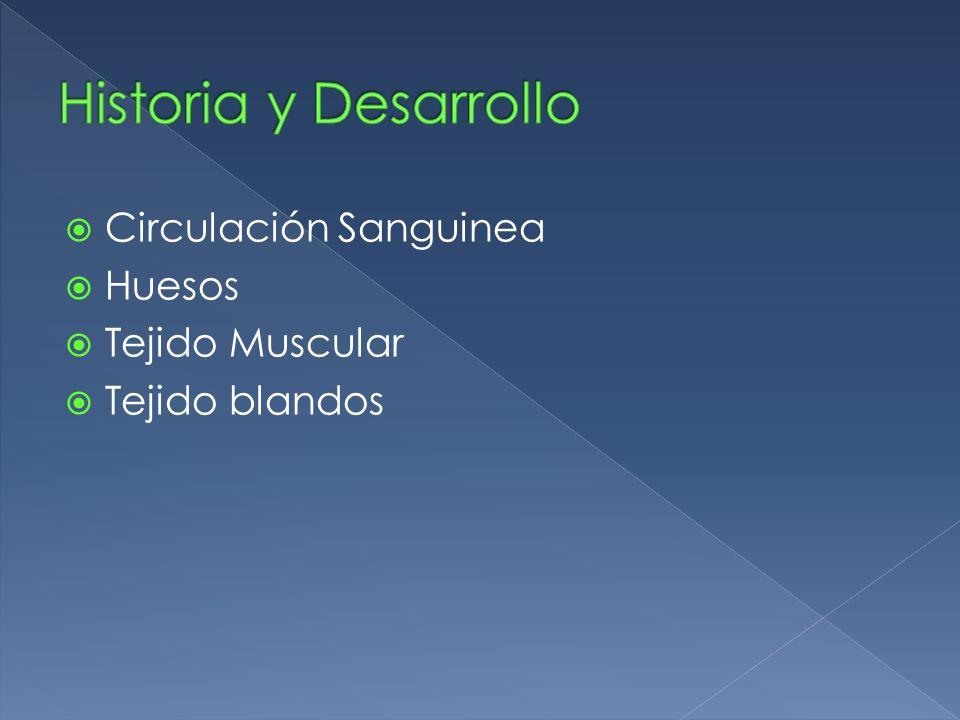 Historia y Desarrollo Circulación Sanguinea Huesos Tejido Muscular
