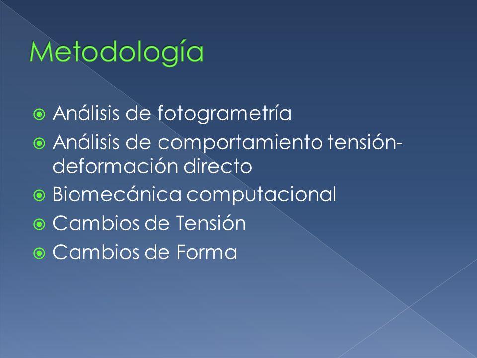 Metodología Análisis de fotogrametría