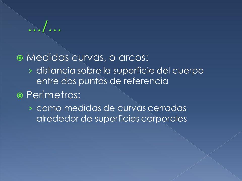 …/… Medidas curvas, o arcos: Perímetros: