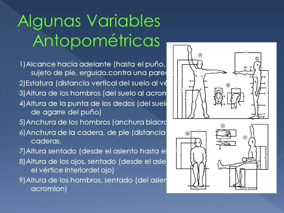 Algunas Variables Antopométricas