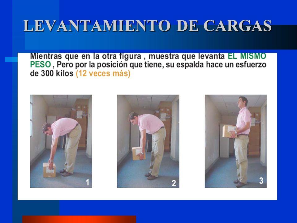 LEVANTAMIENTO DE CARGAS