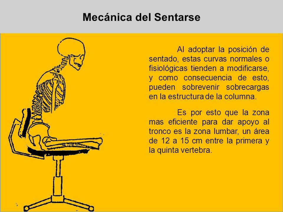 Mecánica del Sentarse