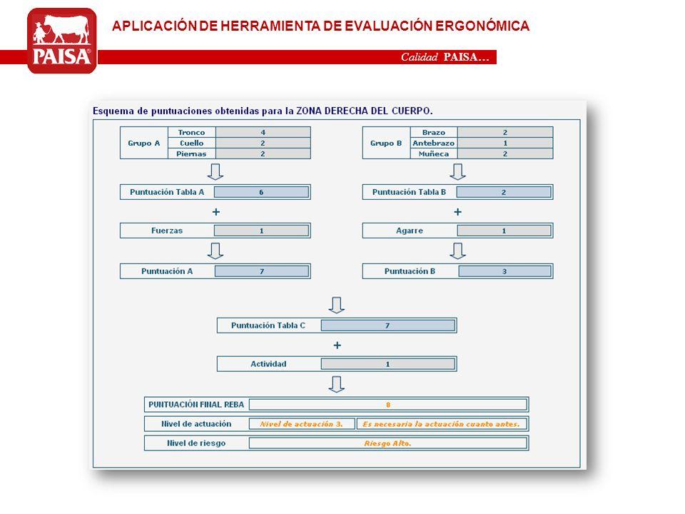 APLICACIÓN DE HERRAMIENTA DE EVALUACIÓN ERGONÓMICA
