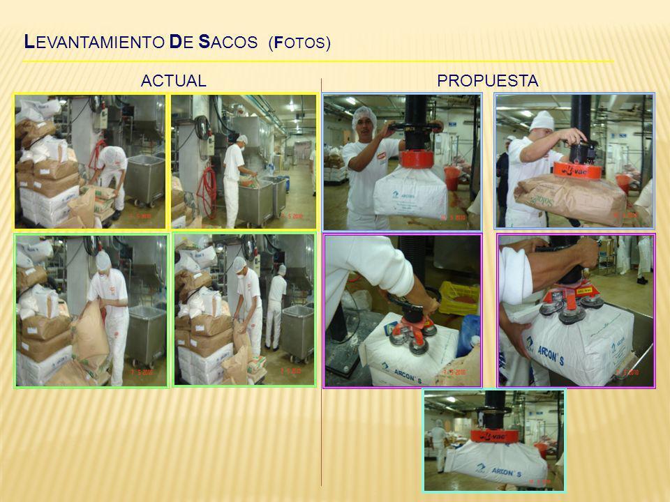 LEVANTAMIENTO DE SACOS (FOTOS)