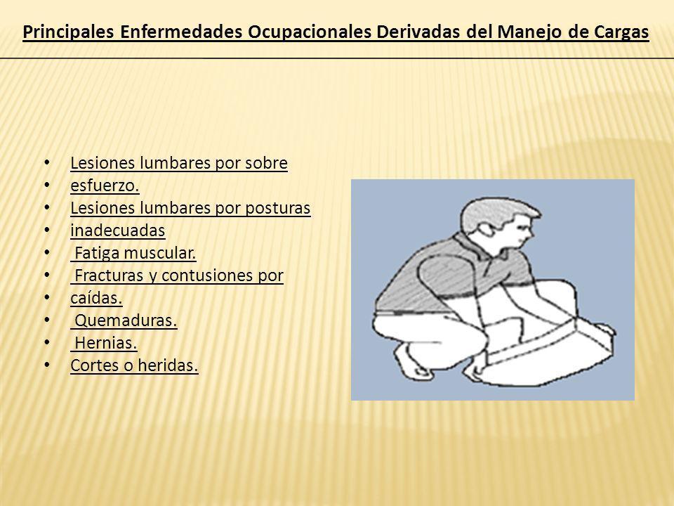Principales Enfermedades Ocupacionales Derivadas del Manejo de Cargas
