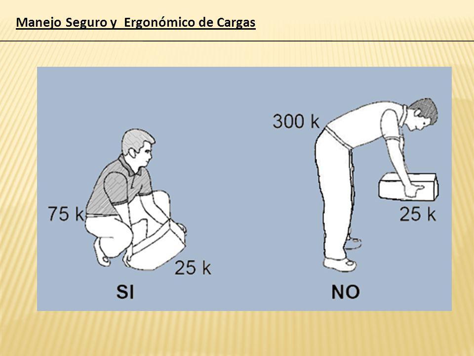 Manejo Seguro y Ergonómico de Cargas