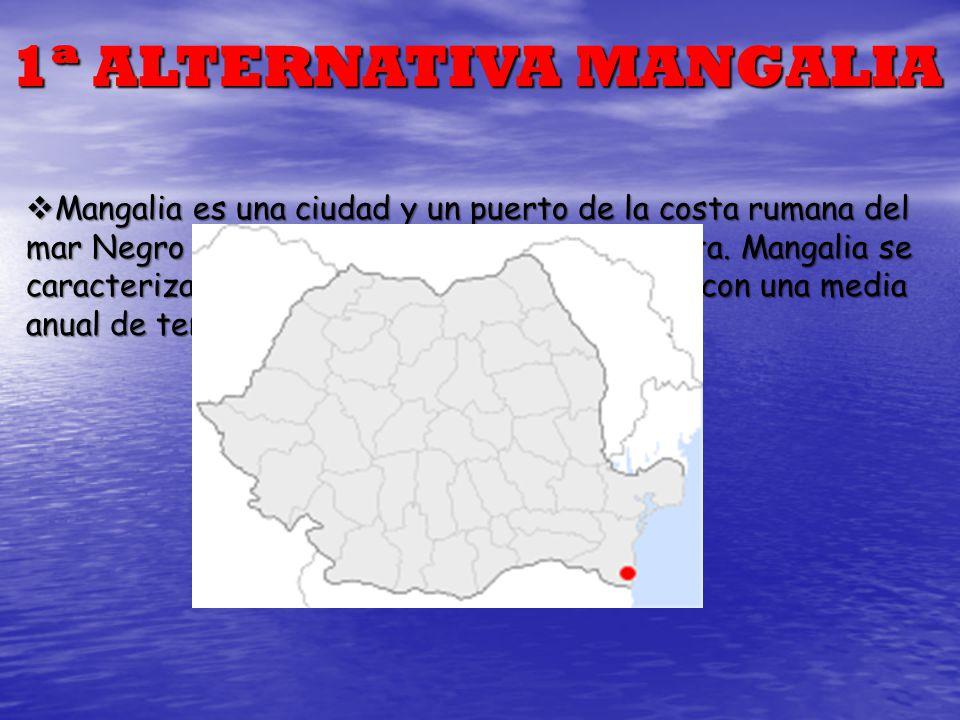 1ª ALTERNATIVA MANGALIA