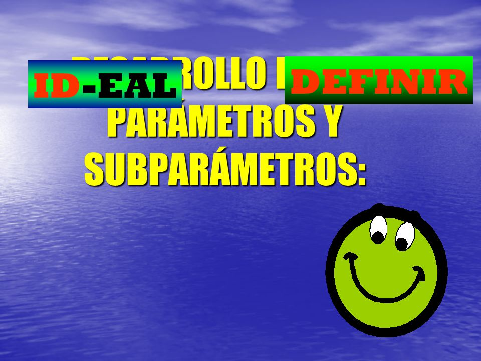 DESARROLLO DE LOS PARÁMETROS Y SUBPARÁMETROS: