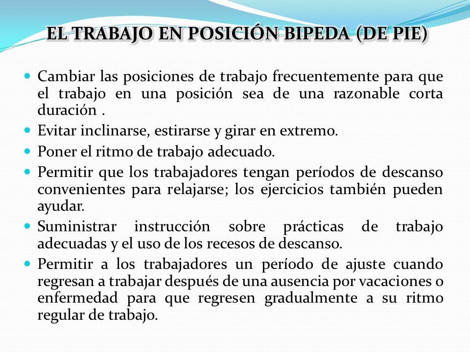 EL TRABAJO EN POSICIÓN BIPEDA (DE PIE)