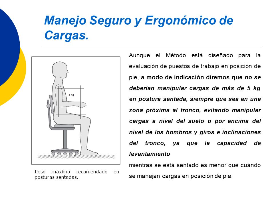 Manejo Seguro y Ergonómico de Cargas.