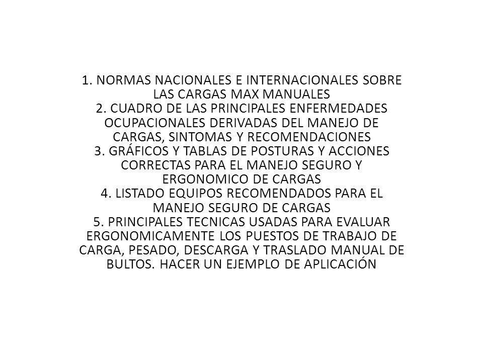 1. NORMAS NACIONALES E INTERNACIONALES SOBRE LAS CARGAS MAX MANUALES 2
