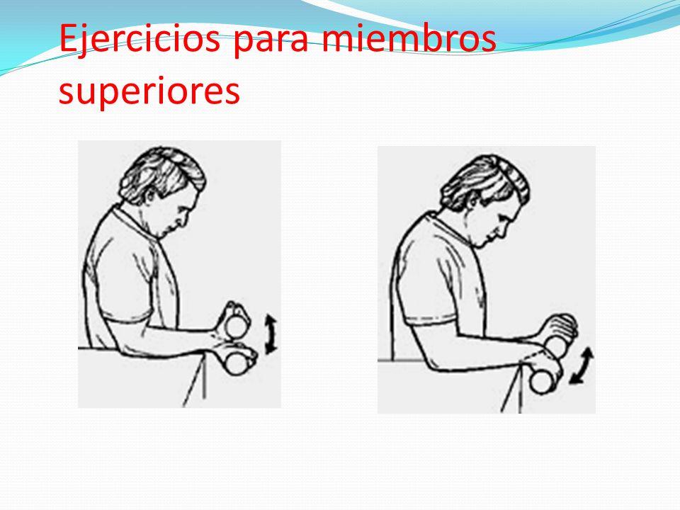Ejercicios para miembros superiores