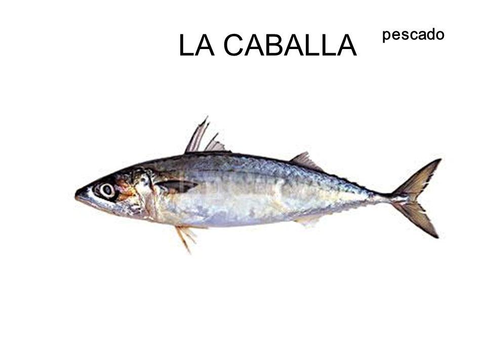 LA CABALLA pescado