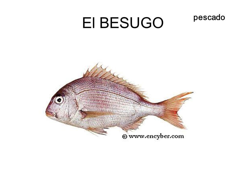 El BESUGO pescado