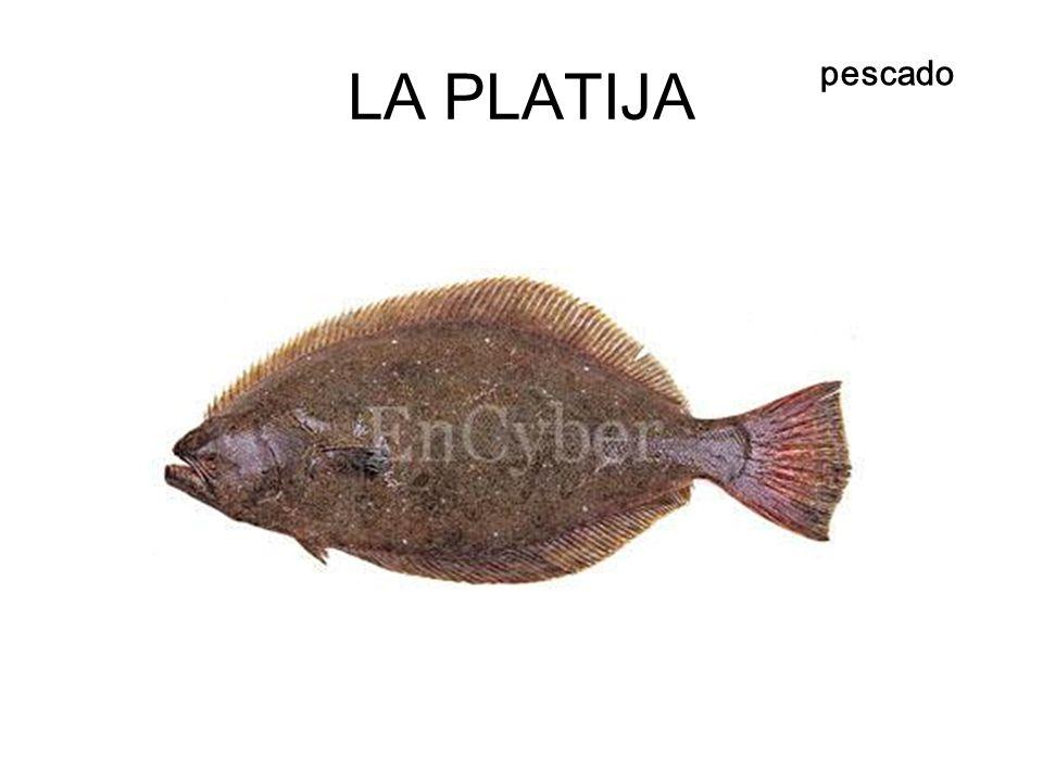 LA PLATIJA pescado