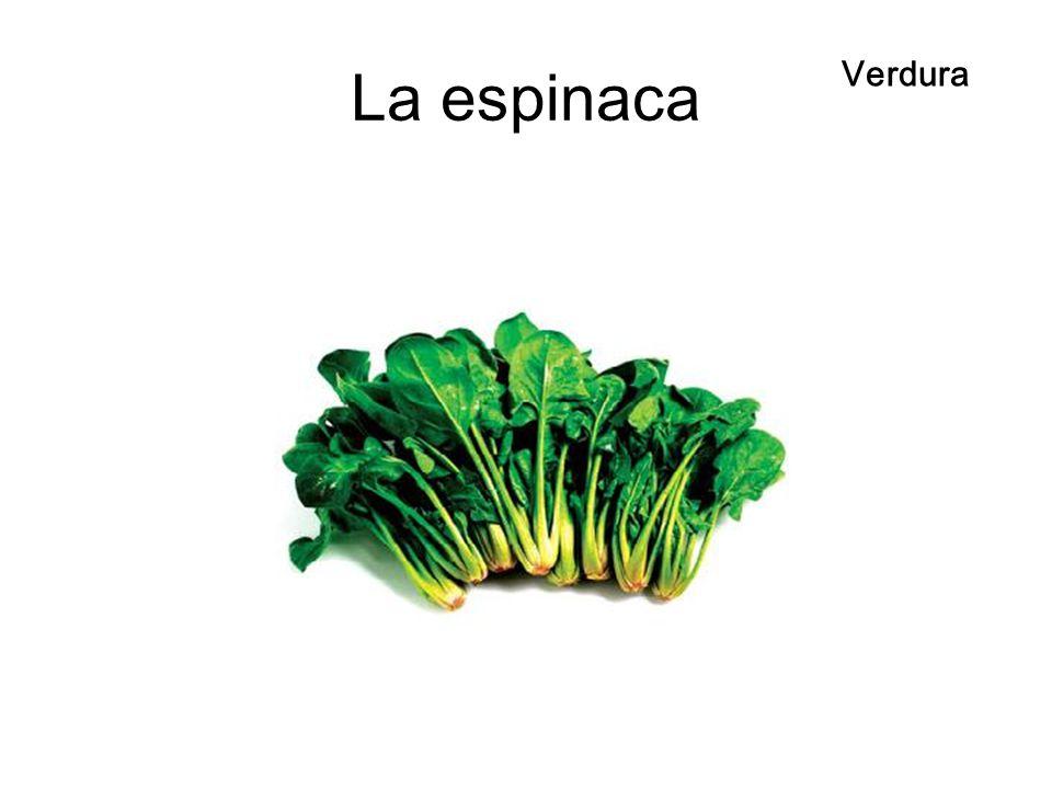 La espinaca Verdura