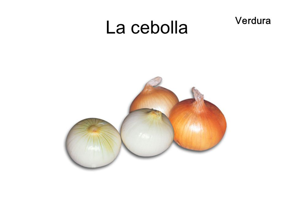 La cebolla Verdura