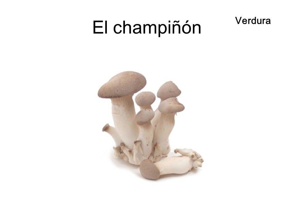 El champiñón Verdura