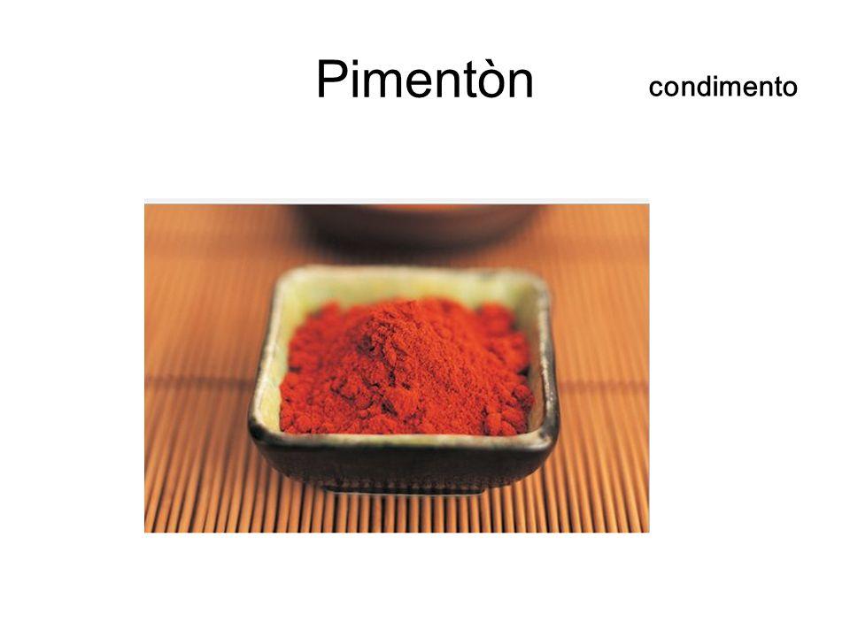 Pimentòn condimento