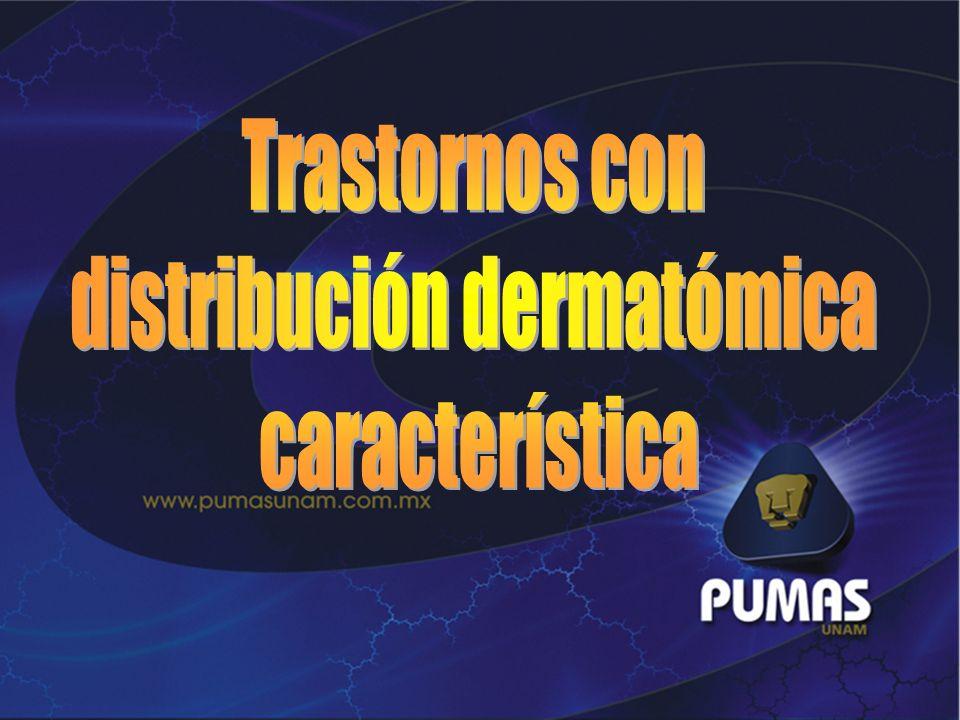 distribución dermatómica
