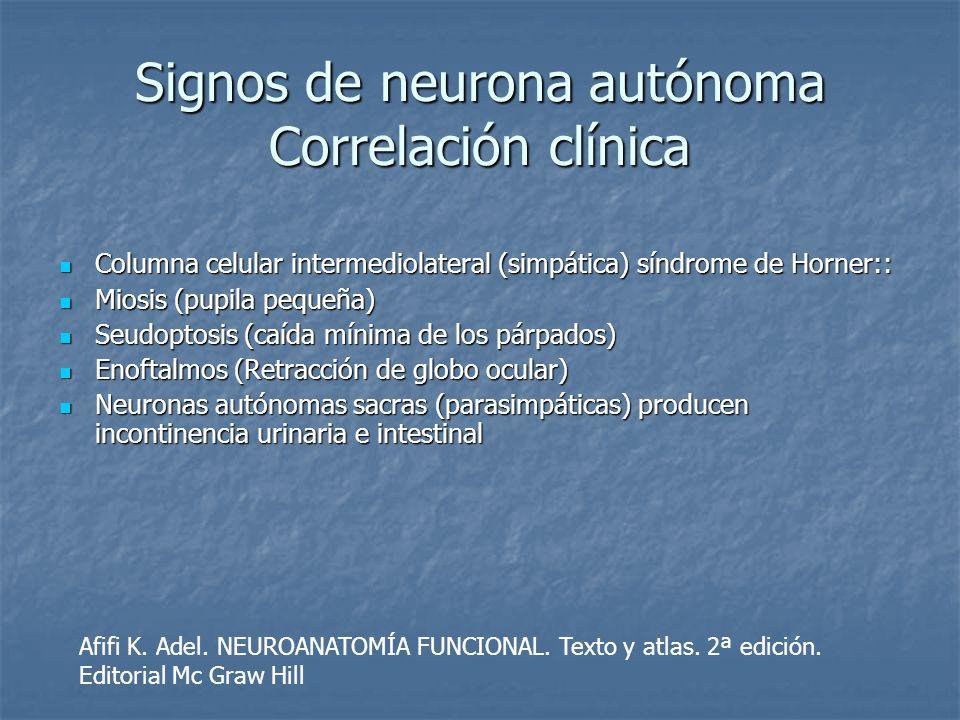 Signos de neurona autónoma Correlación clínica