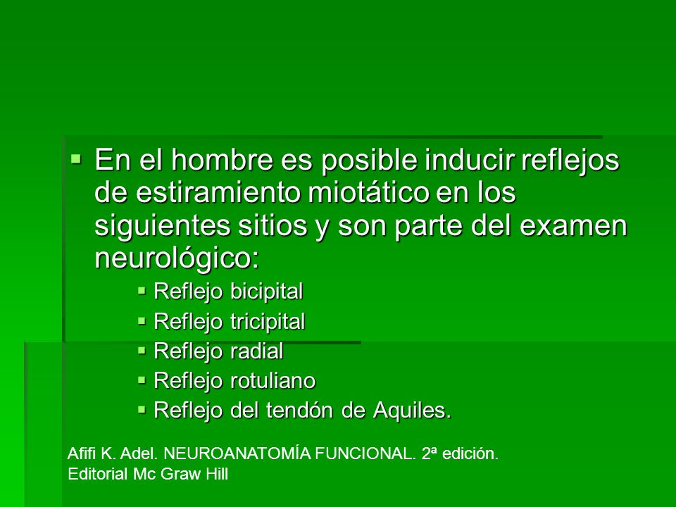 En el hombre es posible inducir reflejos de estiramiento miotático en los siguientes sitios y son parte del examen neurológico: