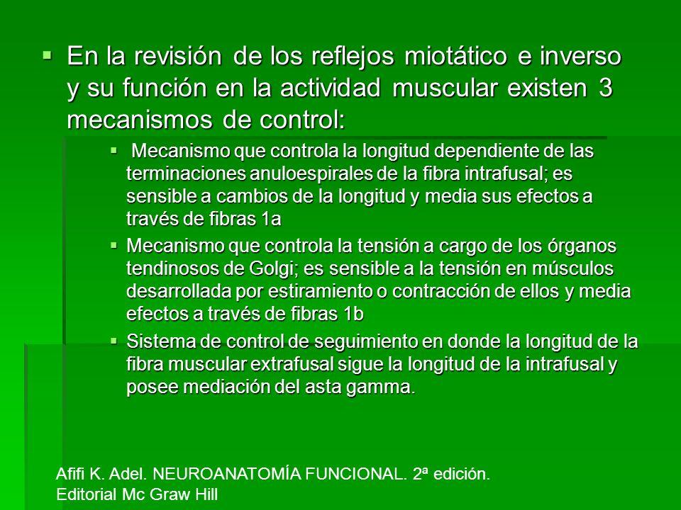 En la revisión de los reflejos miotático e inverso y su función en la actividad muscular existen 3 mecanismos de control: