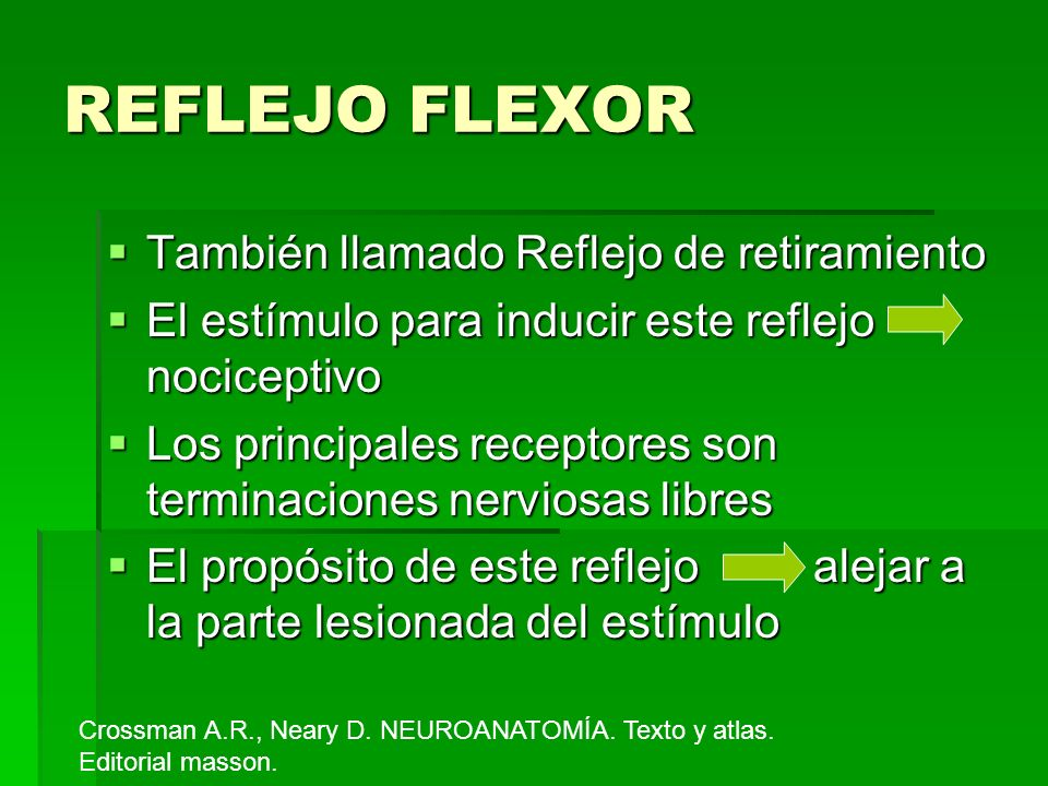 REFLEJO FLEXOR También llamado Reflejo de retiramiento