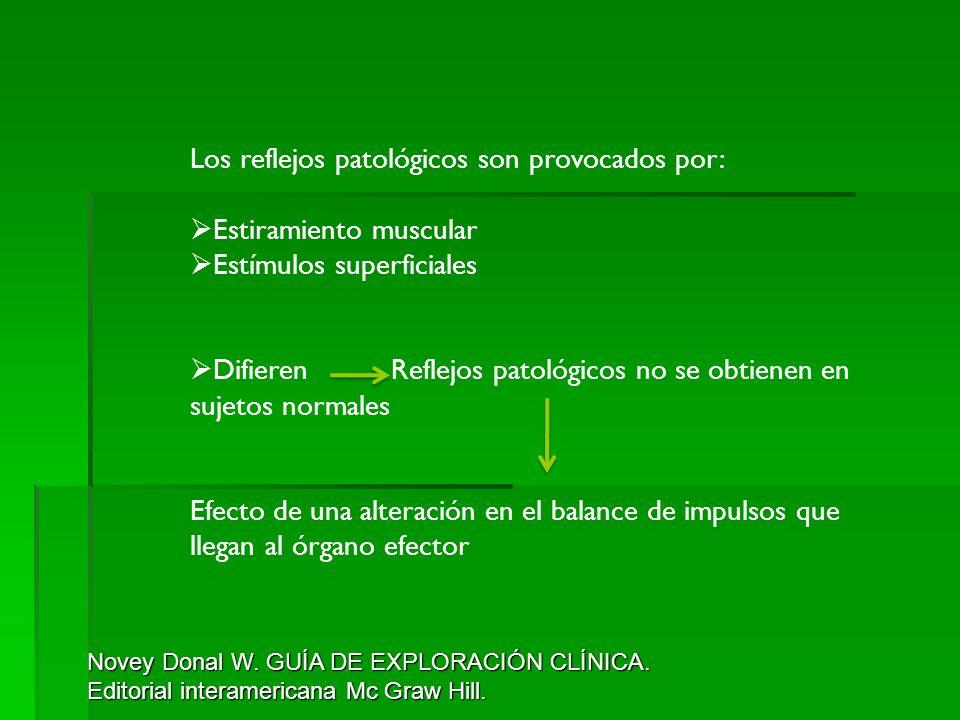 Los reflejos patológicos son provocados por: Estiramiento muscular