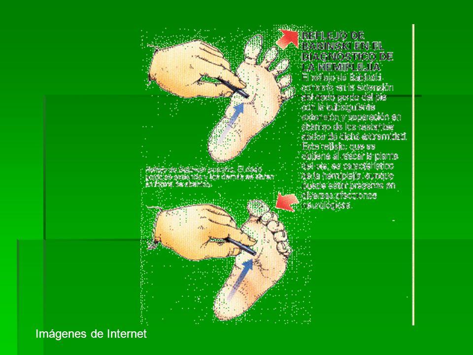 Imágenes de Internet 47