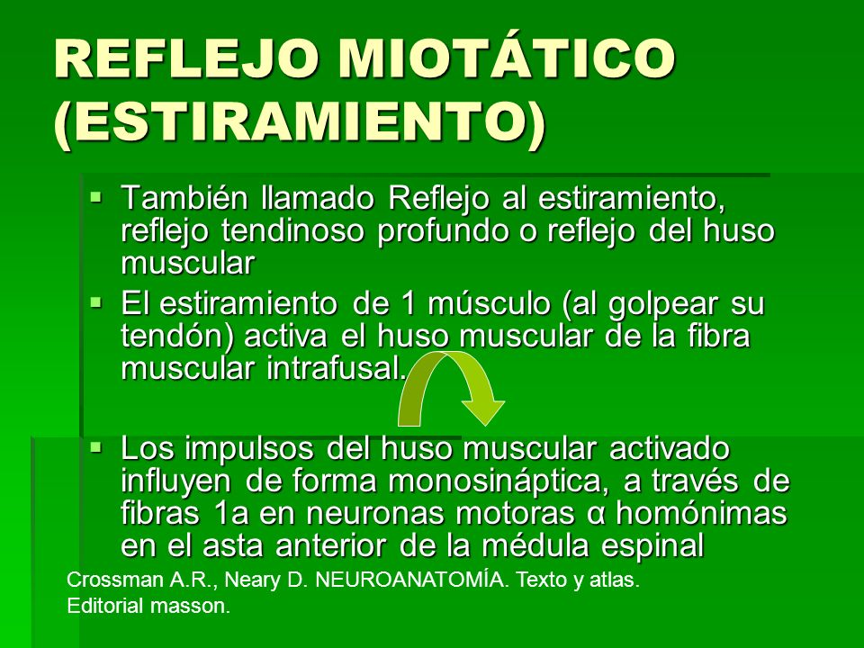 REFLEJO MIOTÁTICO (ESTIRAMIENTO)