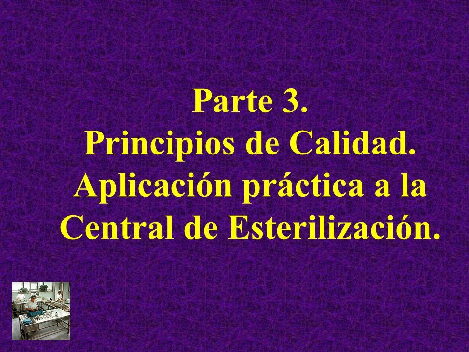 Parte 3. Principios de Calidad
