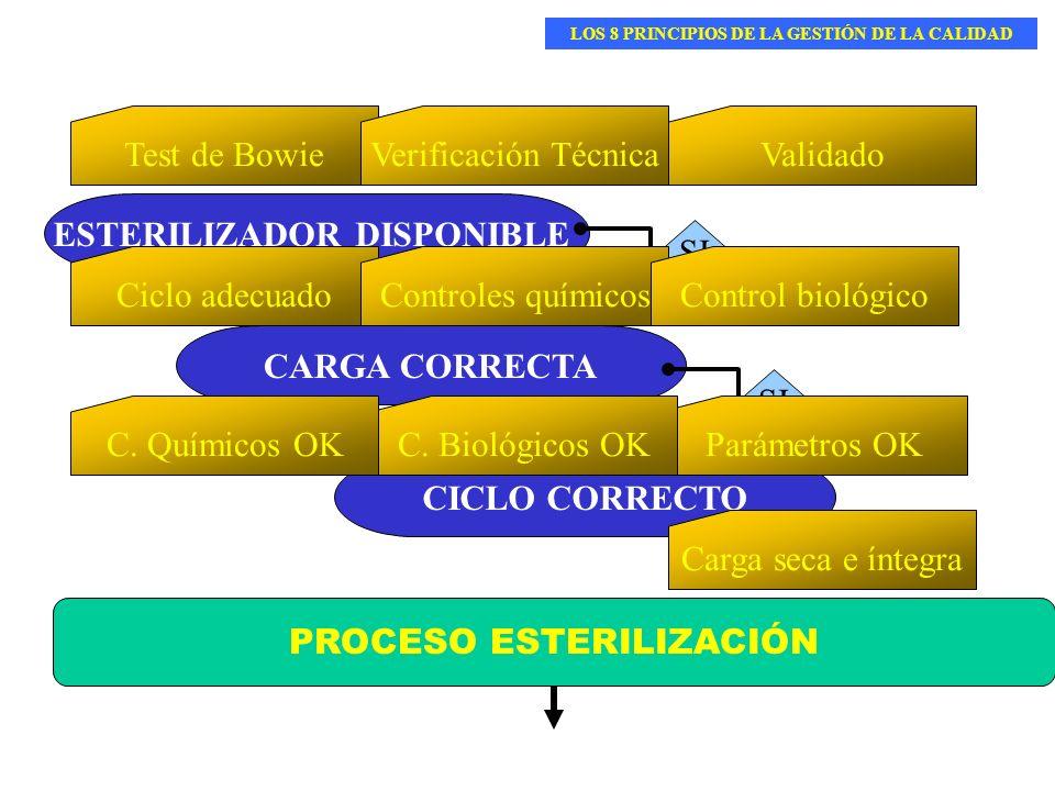 LOS 8 PRINCIPIOS DE LA GESTIÓN DE LA CALIDAD ESTERILIZADOR DISPONIBLE