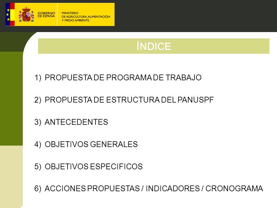 ÍNDICE PROPUESTA DE PROGRAMA DE TRABAJO