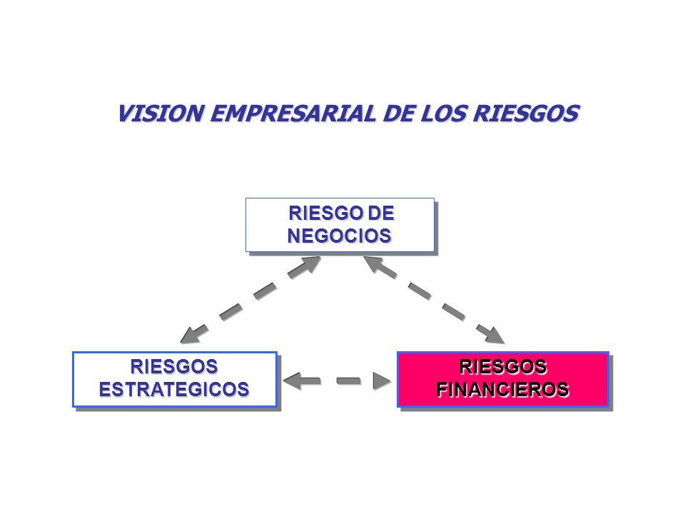 VISION EMPRESARIAL DE LOS RIESGOS