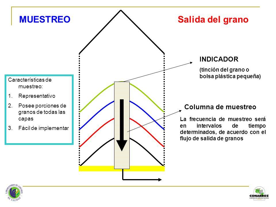 MUESTREO Salida del grano INDICADOR Columna de muestreo