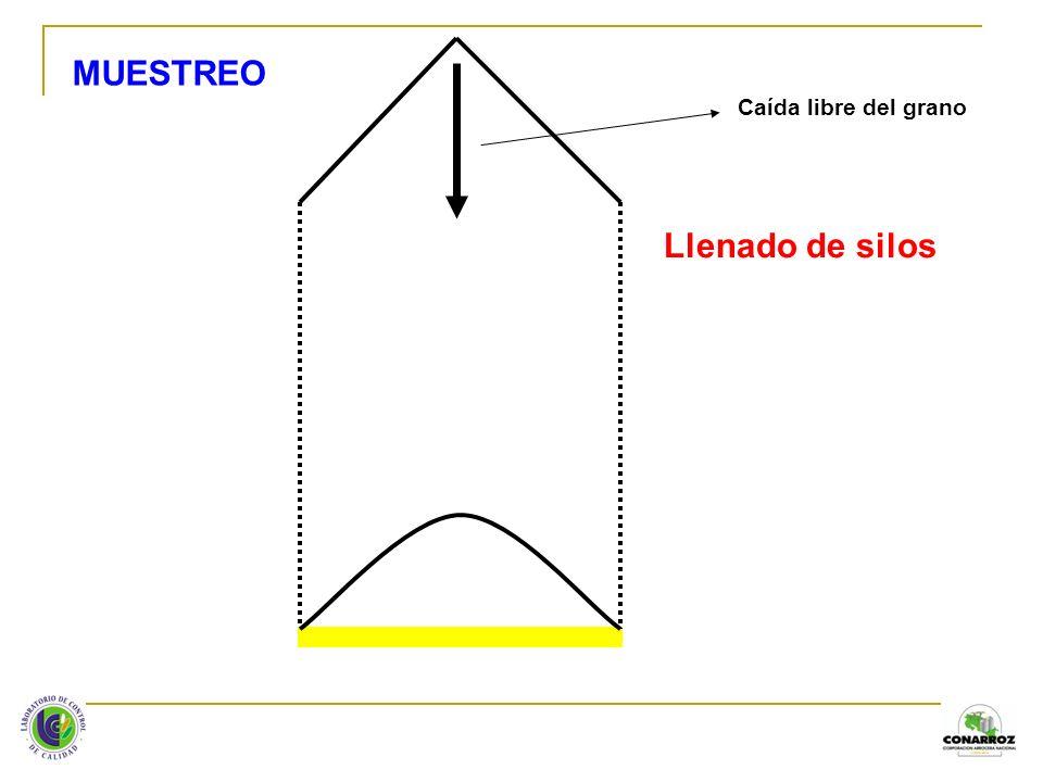 MUESTREO Caída libre del grano Llenado de silos