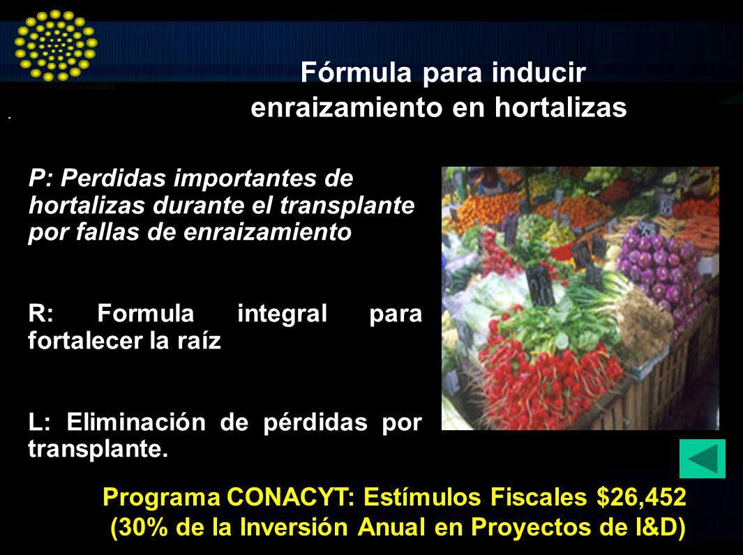 Fórmula para inducir enraizamiento en hortalizas