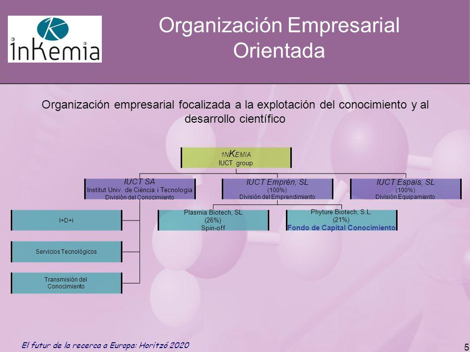Organización Empresarial Orientada