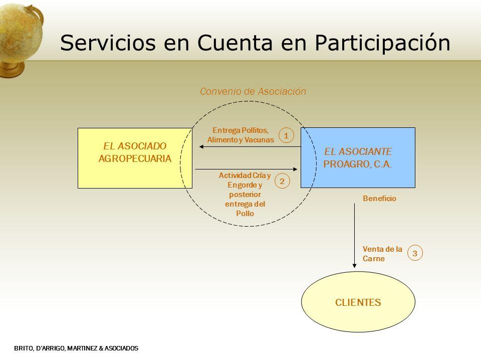 Servicios en Cuenta en Participación