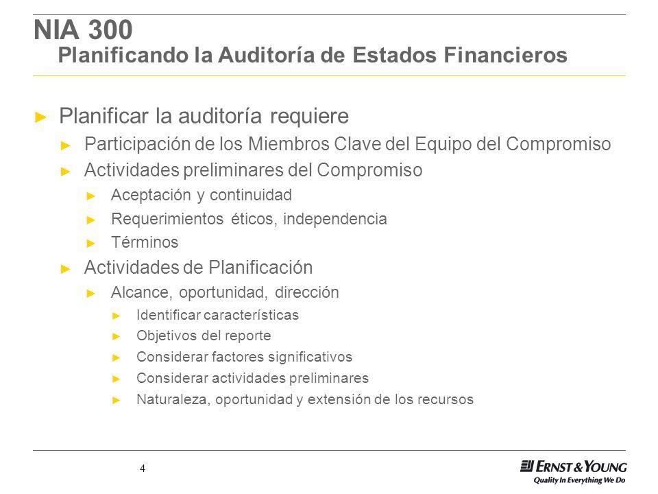 NIA 300 Planificando la Auditoría de Estados Financieros
