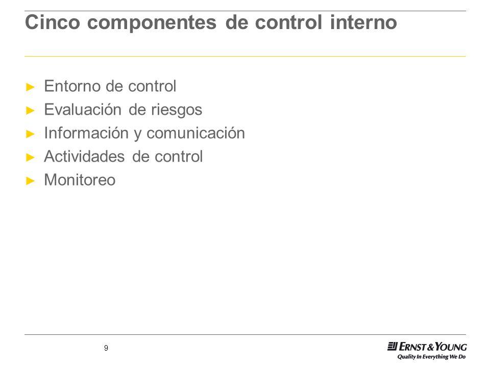 Cinco componentes de control interno